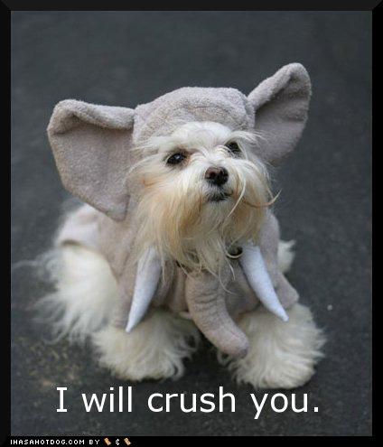 i_will_crush_you_loldog_elephant_ears_pajama_pals_pet_costume